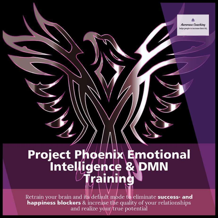Project Phoenix emotional intelligence and dmn course
