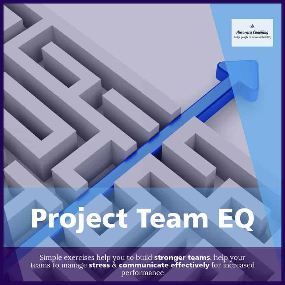 Project Team EQ Course Emotional Intelligence Exercises for Teams